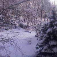 Вид из окошка... :: Valeriya Voice
