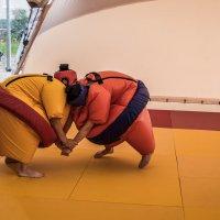 В парке дзюдо на чемпионате мира в Челябинске :: Марк