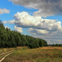 Ведёт дорога к сентябрю... :: Лесо-Вед (Баранов)