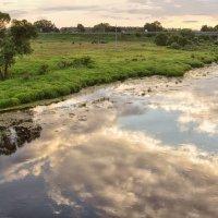 Как в зеркалах, а не в реке, кусочек неба! :: Ирина Данилова