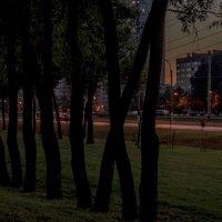 Белая ночь на Петергофском шоссе :: Константин Бобинский