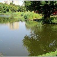 Безмолвное отражение... :: Тамара (st.tamara)