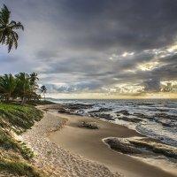***Пляж... :: mikhail grunenkov