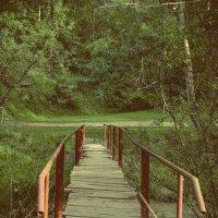Мост :: Ирина Фомина