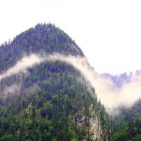 Туман над озером Кенигзее :: Leo