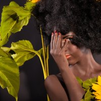 Sun. :: Ferdinand Studio
