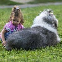бобтейл и девочка :: Лариса Батурова