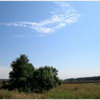 Природа в конце лета... :: Тамара (st.tamara)