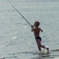 ловись рыбка большая и маленькая :: михаил Половников