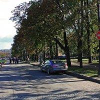 Кленовая улица. :: Александр Лейкум