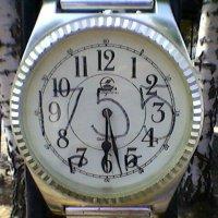 Часы (1689 Монтескье 1755) :: Миша Любчик