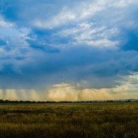 Стены дождя :: Дмитрий Тарарин