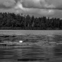 Непогода :: Валерий Талашов