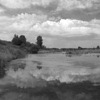 Река :: Мария Комарова