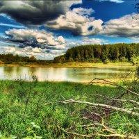 Возле реки :: Андрей Куприянов