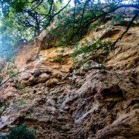 В каньоне :: Witalij Loewin