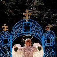 Добрый ангел... :: Владимир Бровко