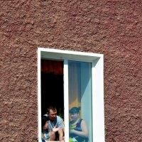 Обсуждение у окна. :: Виталий Дарханов