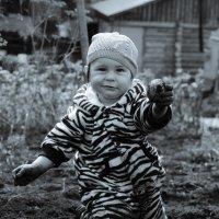 Пойдем копать картошку :: Oleg Bragin