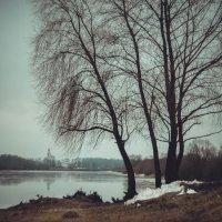 Похолодало........и немного грустно :: Oxana Schneider