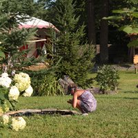 Девочка возле пруда :: Полина Белушкина