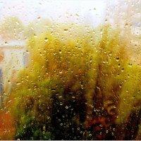 Палитра дождя :: Геннадий Храмцов