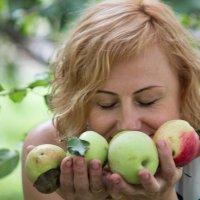 портрет с яблоками :: Елена