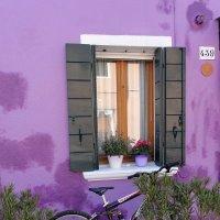 Красочные дома острова Бурано :: Tatiana Belyatskaya