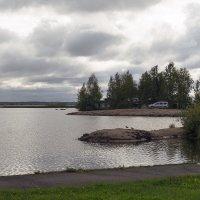 Птичий остров :: Valerii Ivanov