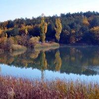 Осенние отражения :: Ольга Голубева