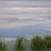 Берег озера...трава в облаках... :: Лилия *