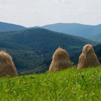 Село в горах :: Сергей Форос