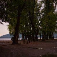 После дождя :: Николай Алехин