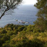 рассекая волны :: Светлана marokkanka