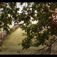 Последний день августа :: Елена Ерошевич