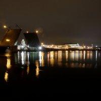 Ремонт Двороцового моста :: tipchik