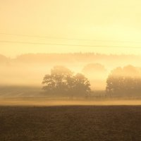 утро с туманами :: Александр С.