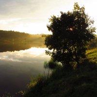 Красивое рядом IMG_7845 :: Андрей Лукьянов
