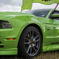 Mustang GT :: Павел Федоров