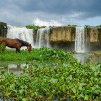 лошадки и водопад v.2.0 :: Сергей Анисимов