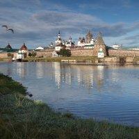 Соловецкие острова :: Сергей Яснов