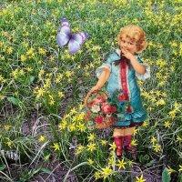 На цветочной поляне. :: владимир
