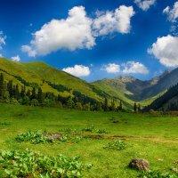 Август в горах2 :: Олька Н
