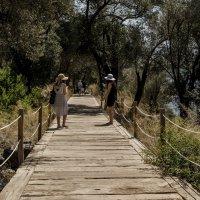 on the bridge :: Dmitry Ozersky