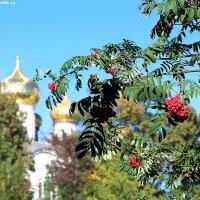 Это одно из прекраснейших и удивительных мест! :: Valentina Lujbimova [lotos 5]