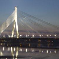 Вантовый мост в Риге :: Tatjana Stepanova