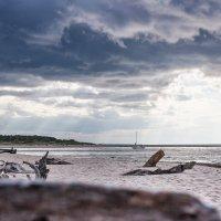 Солёный воздух :: Evgeny Shulin