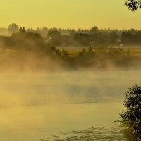 Туман над Дубной. :: Виктор Евстратов