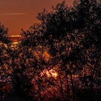 Закат в начале осени. 03.09.2014. 03. :: Анатолий Клепешнёв
