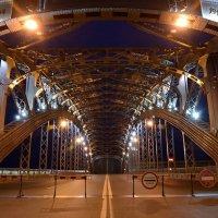 большеохтинский мост :: Таня Котрехова
